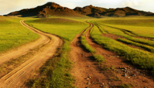 transition paths, Risk Resource article